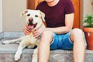 Umzugstipps zur Hund ummeldung bei der Versicherung